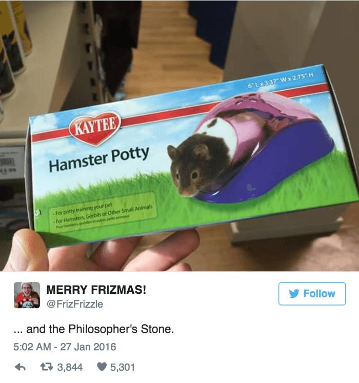 Hamster Potty