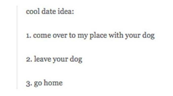 Leave Your Dog