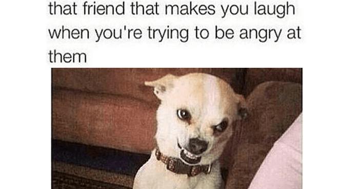 Makes You Laugh