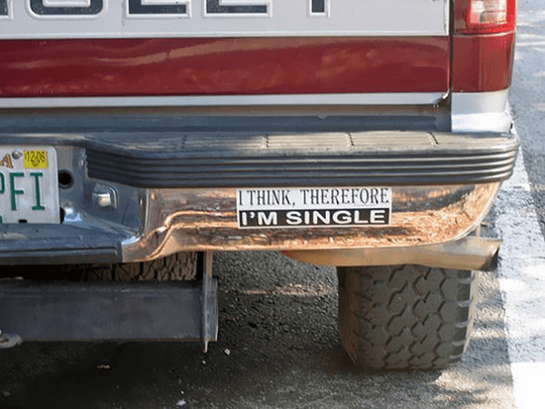 Reasons You Are Single Funny Bumper Stickers