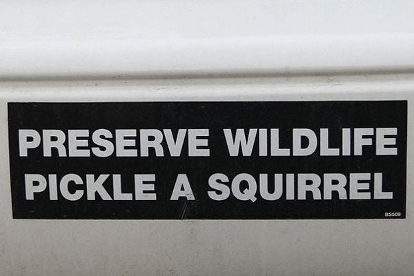 Way To Preserve Wildlife Funny Bumper Stickers