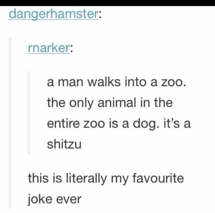 Zoo Hilarious Puns