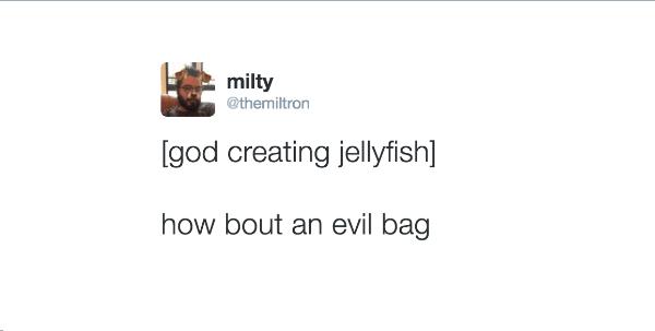 Angry Bag