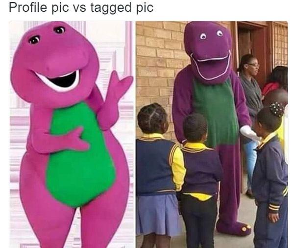 Barney Profile V Tagged