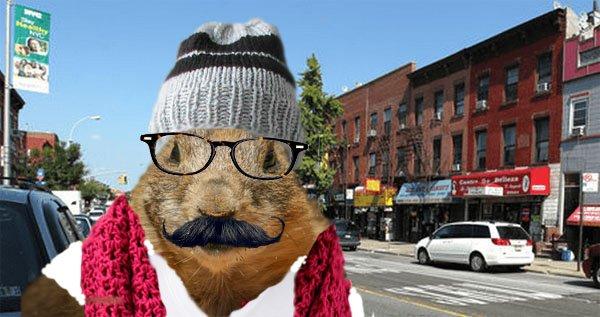 Hipster Groundhog