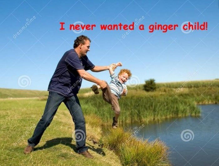 Never Wanted A Ginger