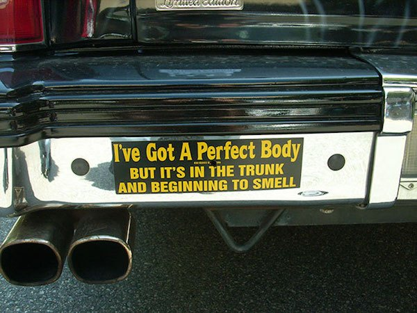 Funny Bumper Stickers Perfect Body