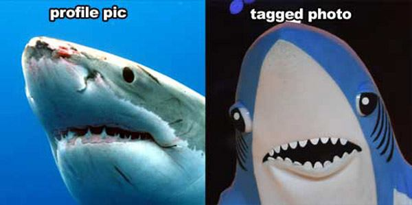 Profile Photo Vs Tagged Left Shark
