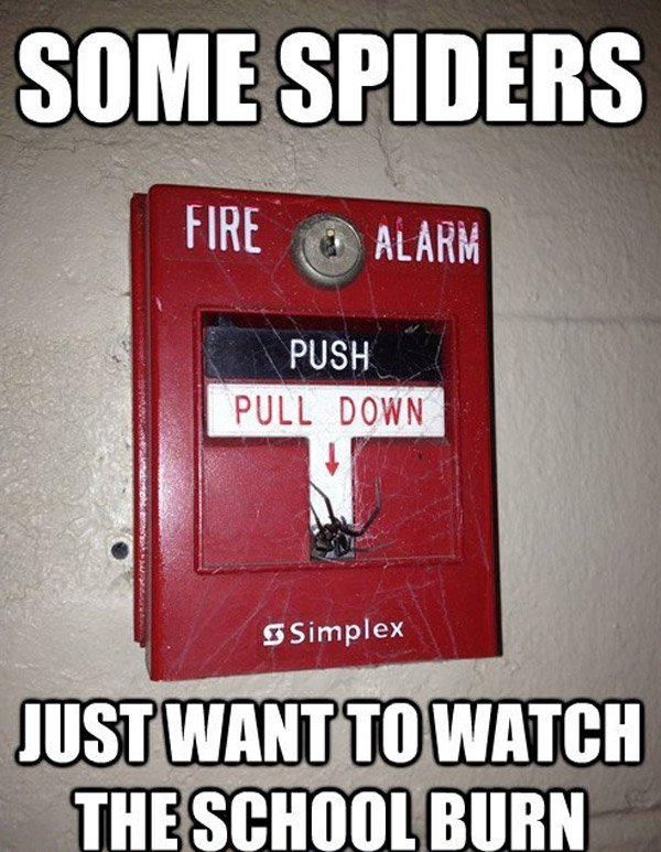 Spider Fire Alarm