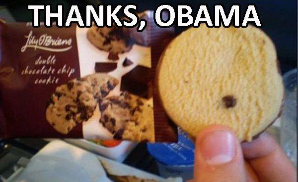 Thanks Obama Cookie