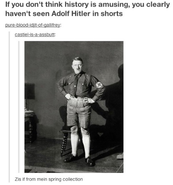 Hitler In Shorts History Memes