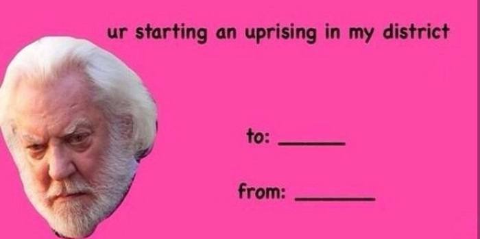 Hunger Games Uprising Hilarious Valentine Cards