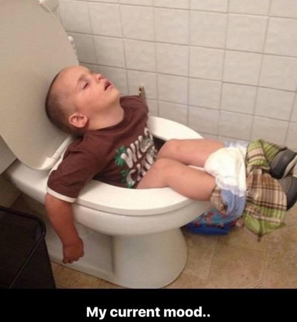 Asleep In Toilet