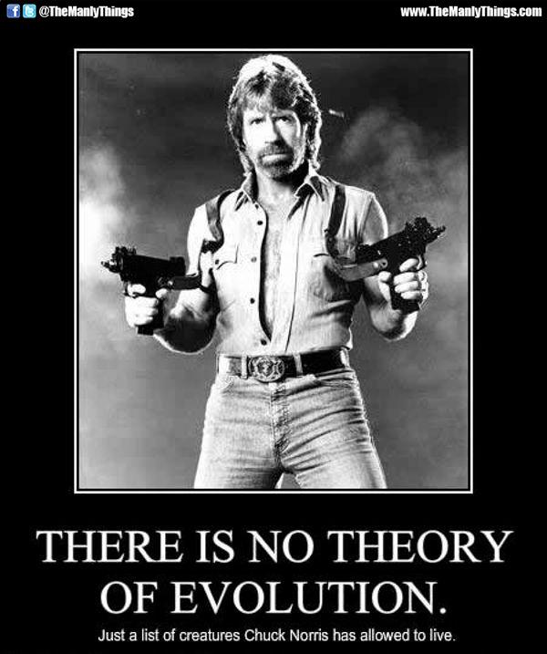 Evolution Chuck Norris Memes