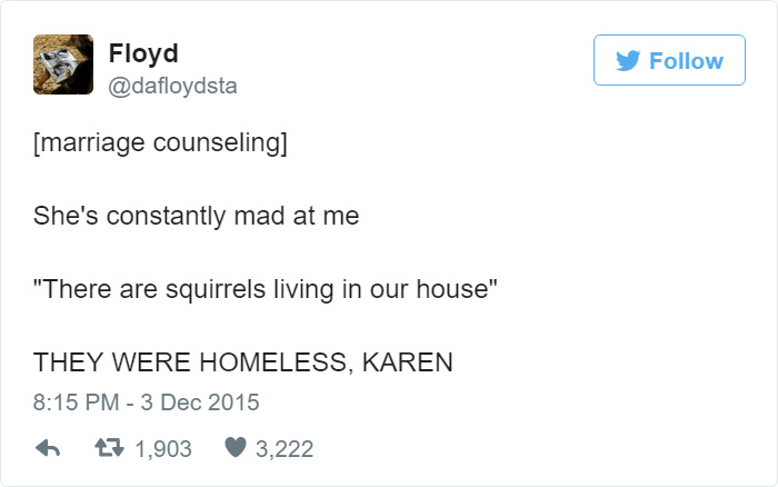 Homeless Squirrels Adoption