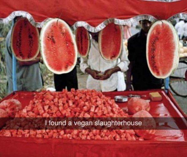 Jokes About Vegans