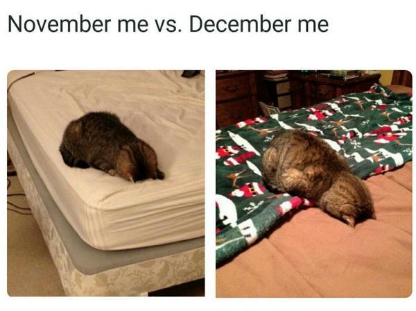 November Me Vs December Me