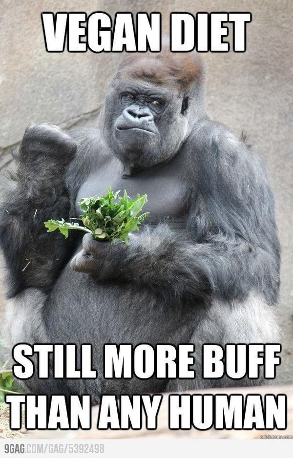 Ripped Gorilla