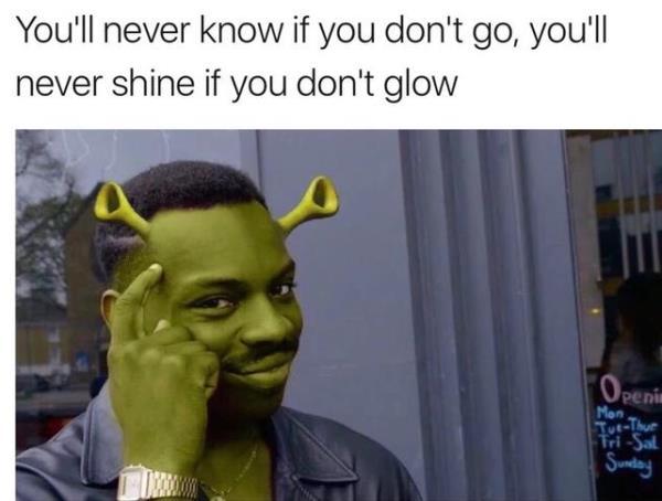 Shrek Roll Safe Memes