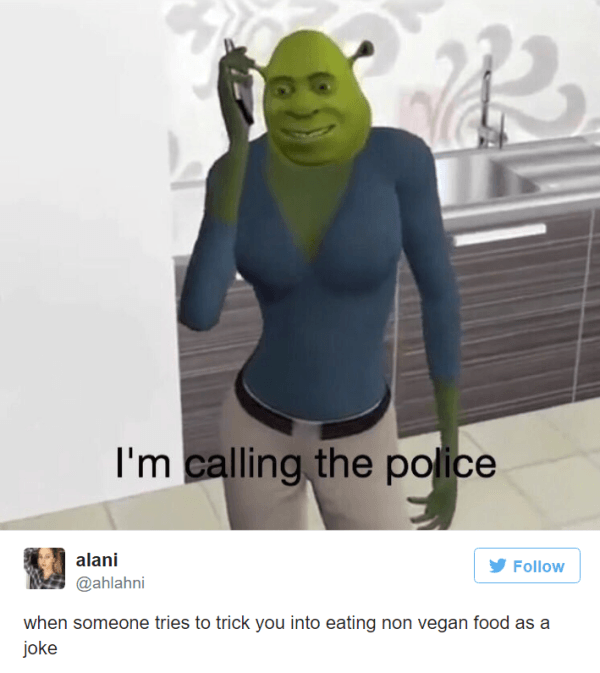 28 Jokes About Vegans That At Least The Omnivores Will Find Funny