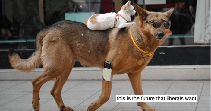 OG Dog Ride