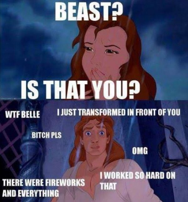 Beauty And The Beast Funny Meme
