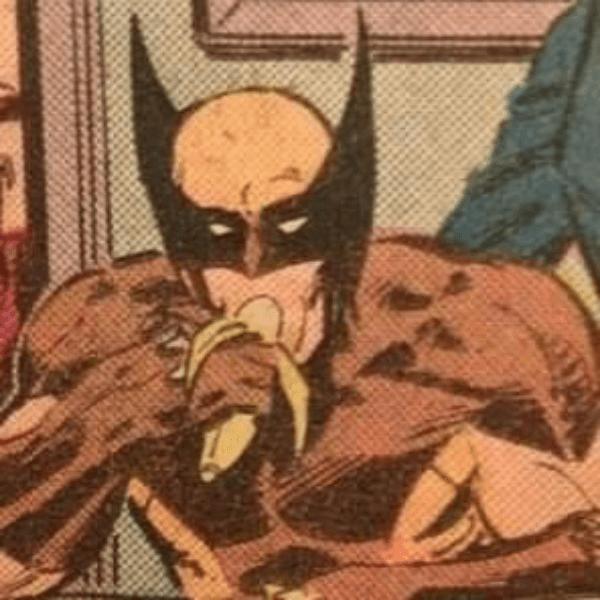 Bj Practice Wolverine