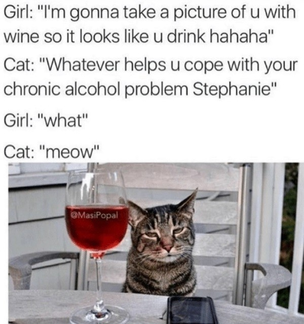 Cat Wine Coping