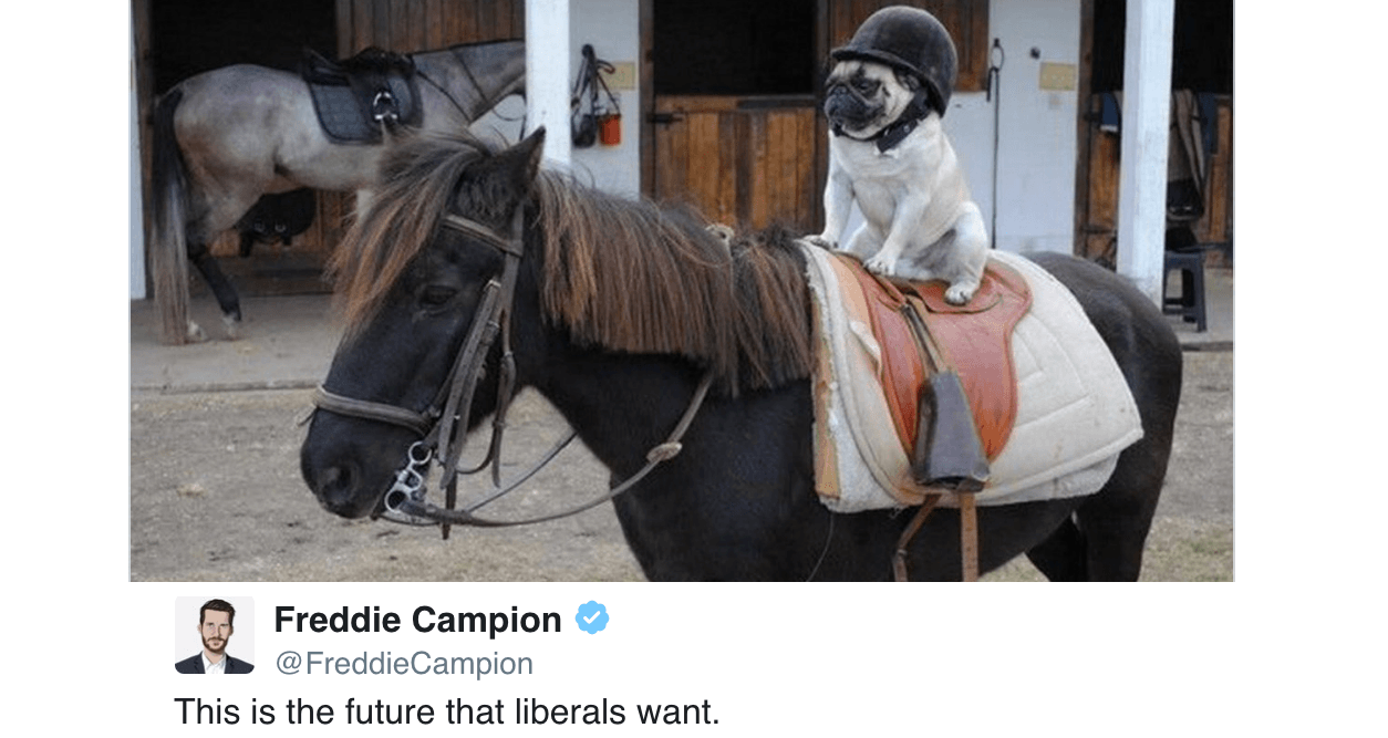 Dystopian Liberal Future