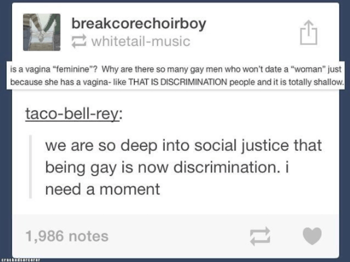 Gay Tumblr Truths Social Justice