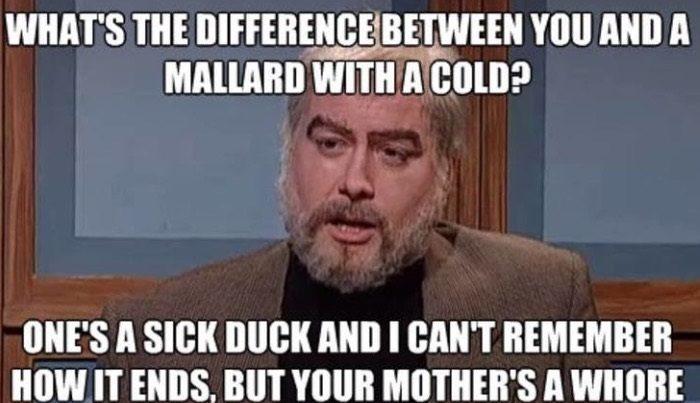 Mallard With A Cold