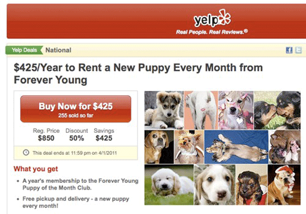 Yelp Rent A Puppy