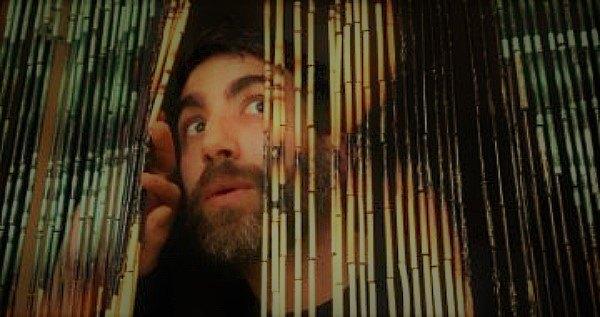 Beaded Curtains Never Surprised Wiretap