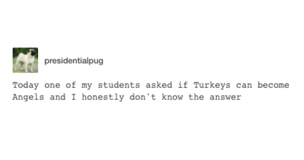 Can Turkeys Become Angels