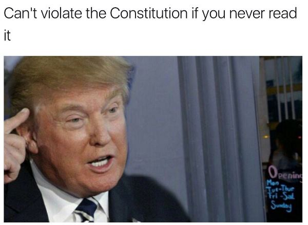 cant violate the constitution 1 33 funny donald trump memes that make 2020 seem not so far away