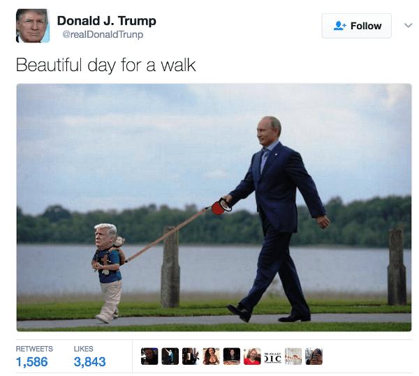 Donald Trump Memes Putin