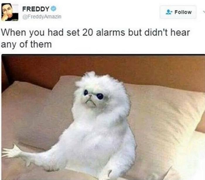 Don't Hear Alarms