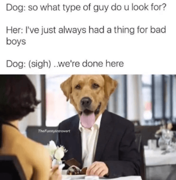 First Date Doggos