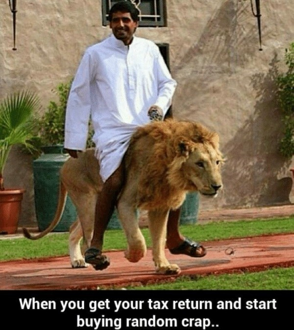 Taxes Funny Lion