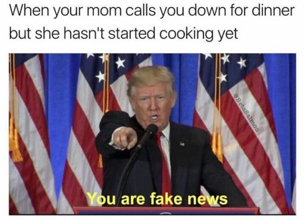 33 Funny Donald Trump Memes That Make 2020 Seem Not So Far ...