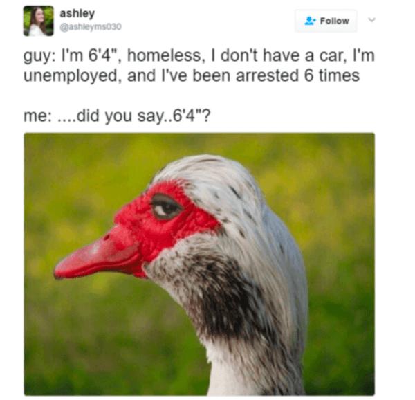 64guy