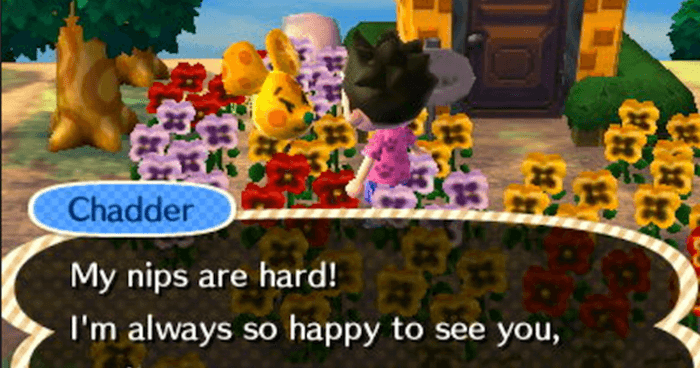 27 Funny Animal Crossing Screenshots That Are Rated M For Mature