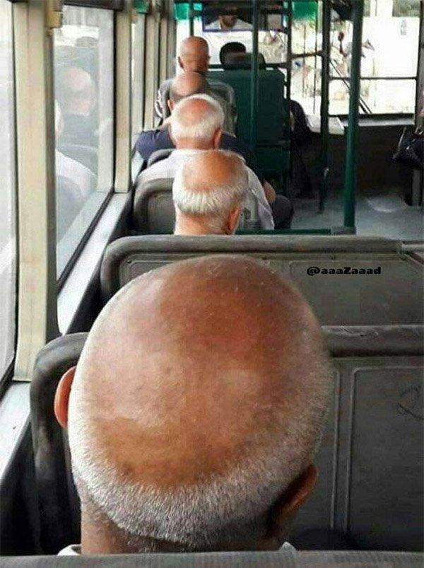 Bald Heads