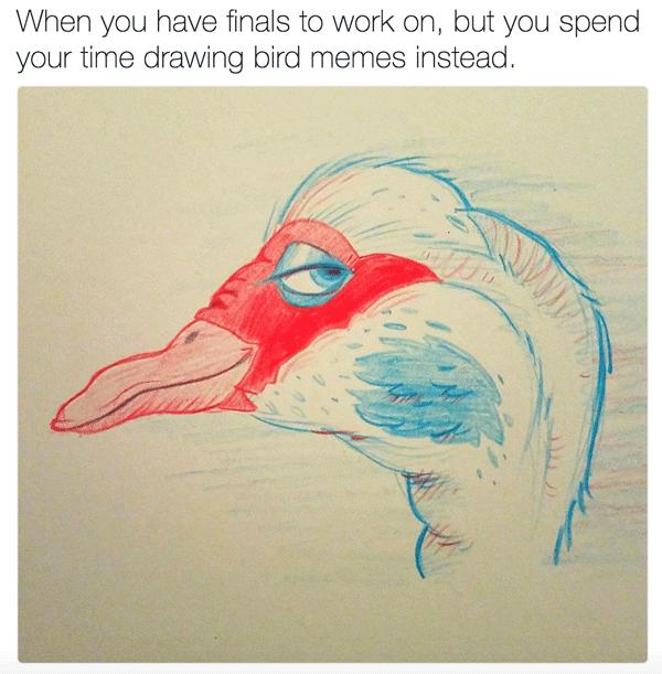 Bird Drawingmeme