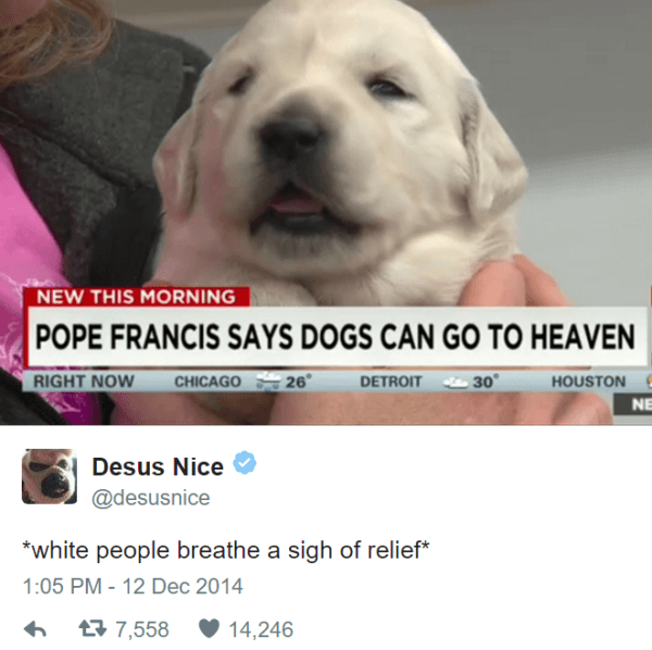 Dogs Can Go To Heaven