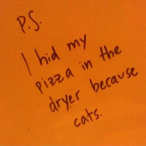 Drunk Notes Because Cats