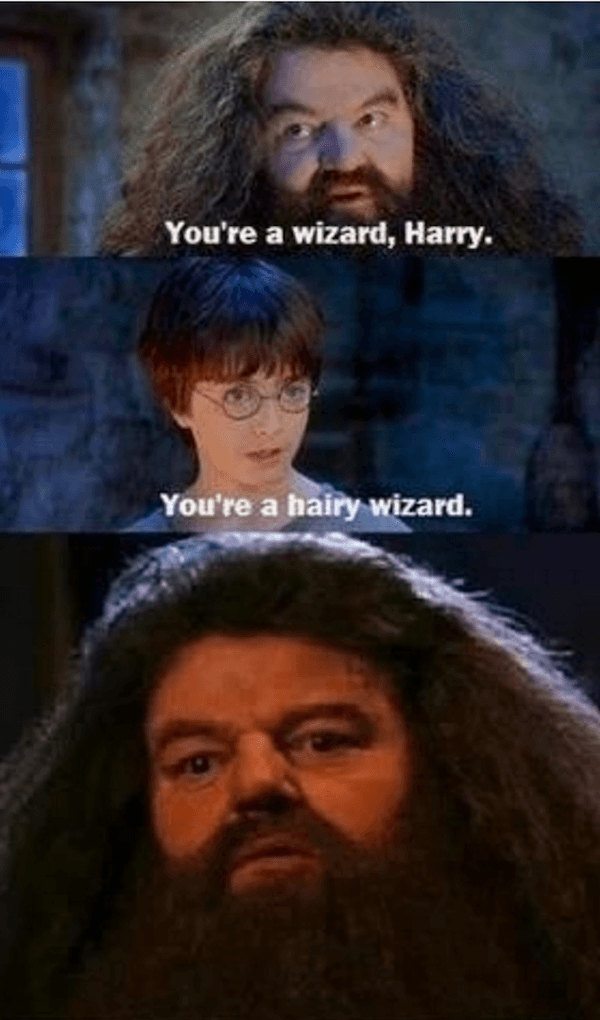 Hilarious Harry Potter Memes