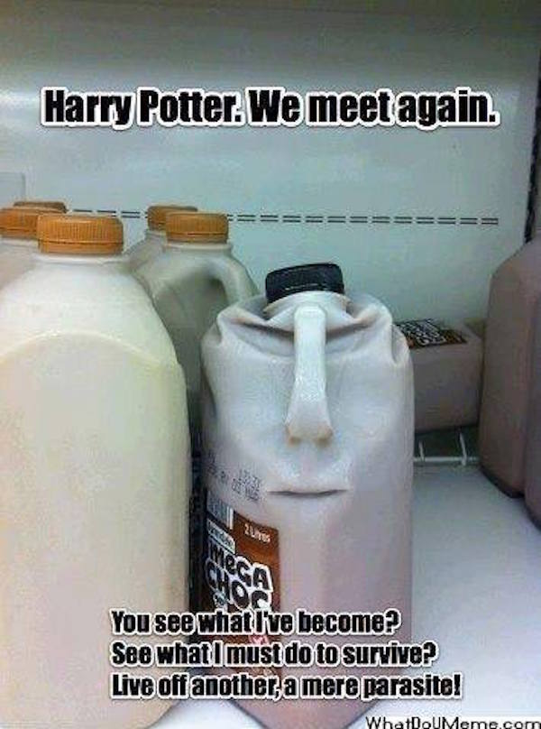 The Best Harry Potter Memes