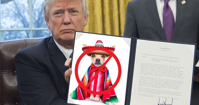 Trump Cancels Cinco De Mayo