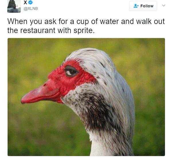 Water Sprite